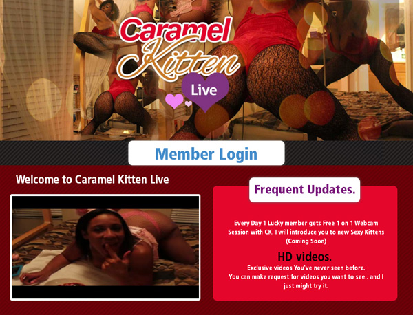 Caramel Kitten Live Password