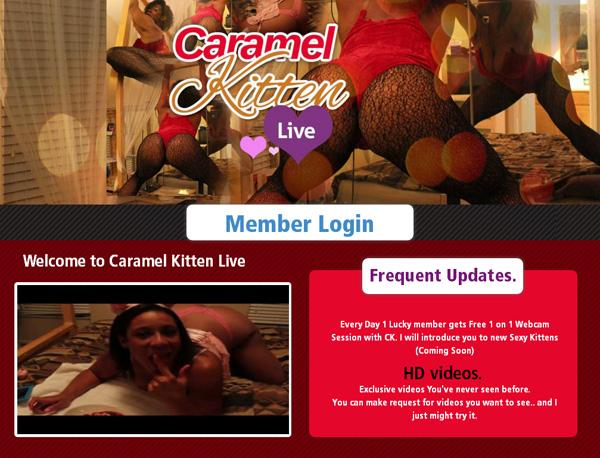 Buy Caramel Kitten Live Account